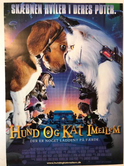 Hund og Kat imellem