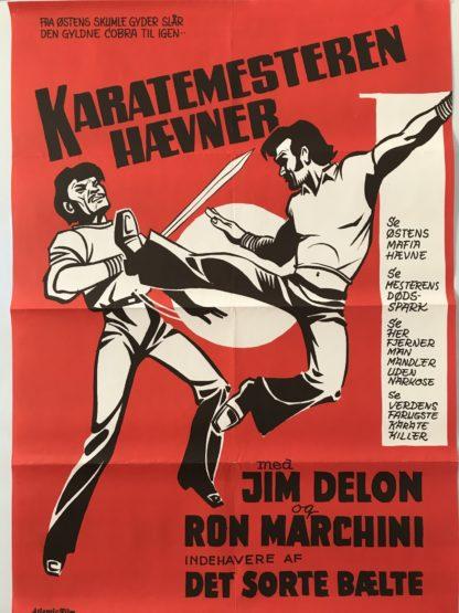 Karatemesteren hævner